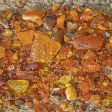 Collecting amber